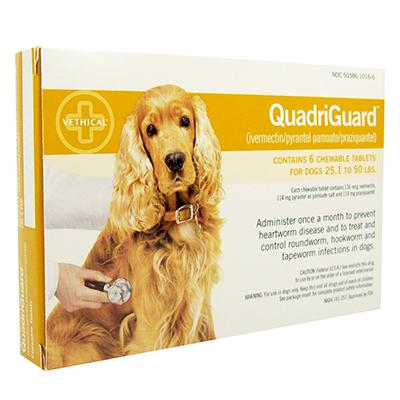 Image for QuadriGuard Chewable Tablets