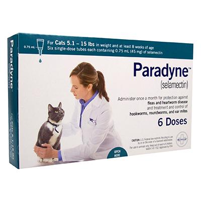 Image for Paradyne Feline